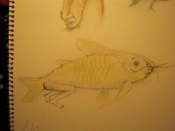 ayoan fishman.JPG
